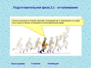 Затем он выполняет второй, короткий, стопорящий шаг и, приземляясь на левую