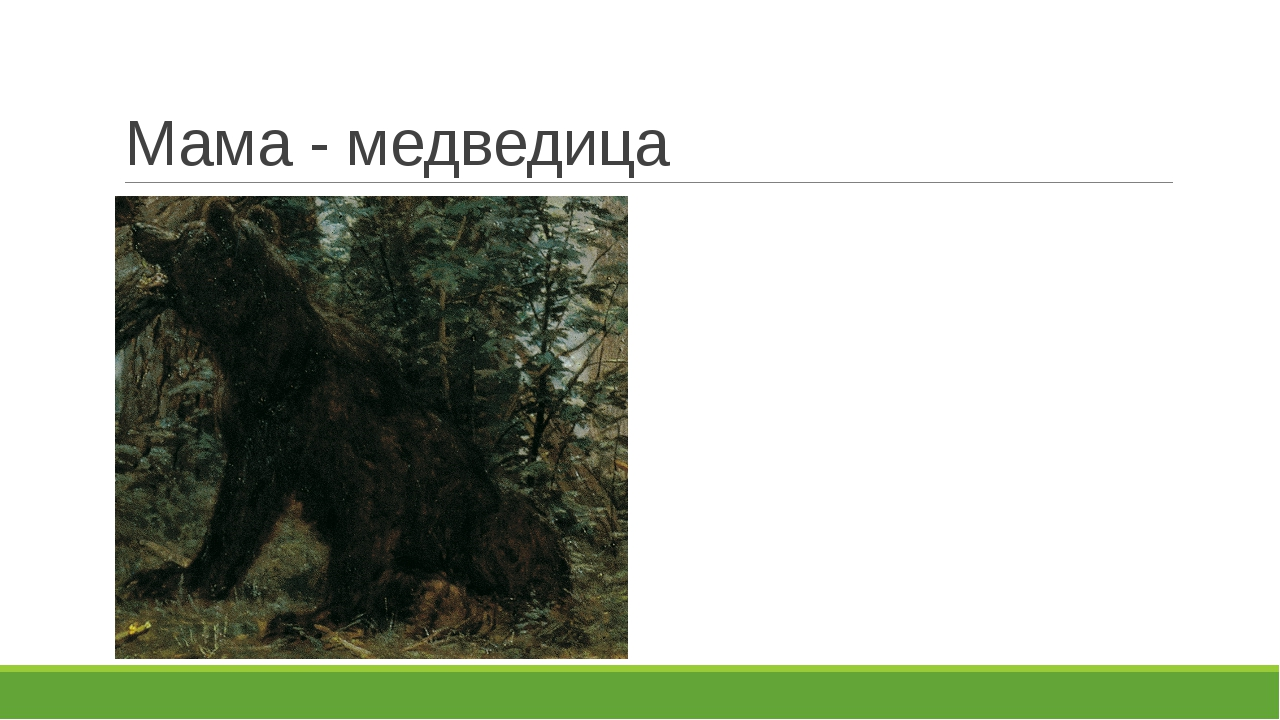 Мама - медведица