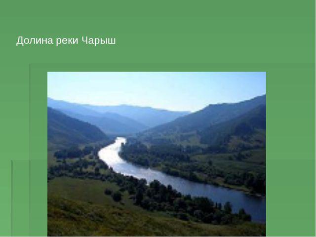 Долина реки Чарыш