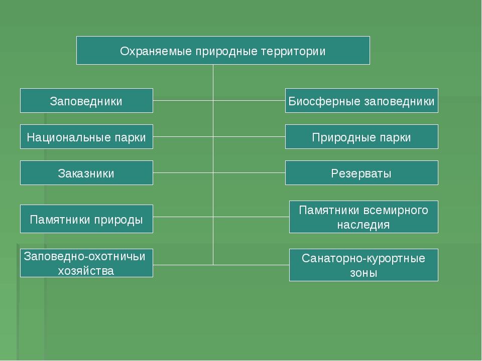 Охраняемые природные территории Заповедники Национальные парки Заказники Памя...