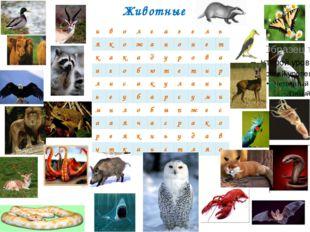 Животные и в о л г а з е л ь я к о ж а н о н е т к а к а д у р о в а а г о б