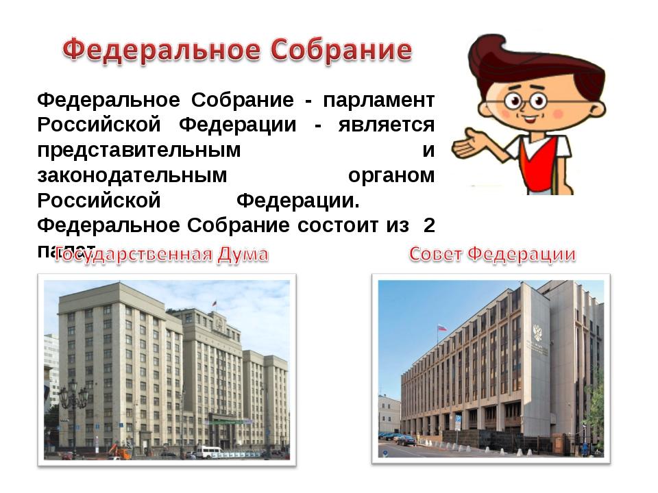 Федеральное Собрание - парламент Российской Федерации - является представител...
