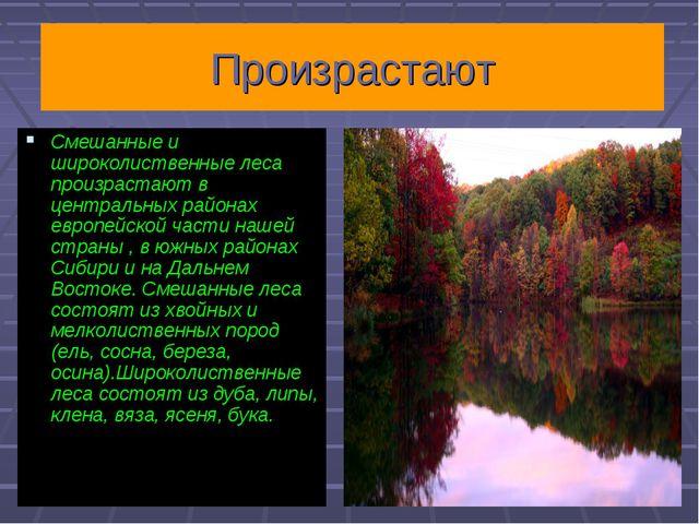 Произрастают Смешанные и широколиственные леса произрастают в центральных рай...