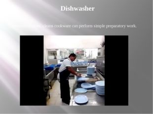 Dishwasher Promises washes, cleans cookware can perform simple preparatory wo