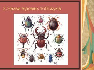 3.Назви відомих тобі жуків