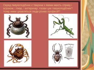 Серед павукоподібних є тварини з якими мають справу і агроном, і лікар, і вет