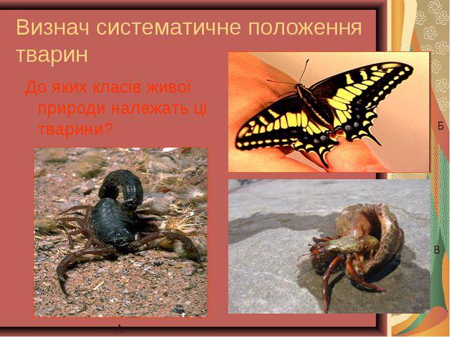 Визнач систематичне положення тварин До яких класів живої природи належать ці...