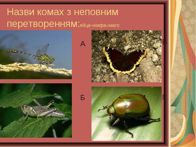 Назви комах з неповним перетворенням:яйце-німфа-імаго А Б В Г А Б