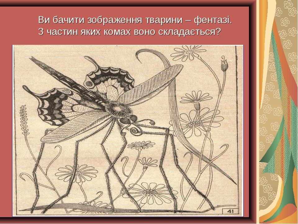 Ви бачити зображення тварини – фентазі. З частин яких комах воно складається?