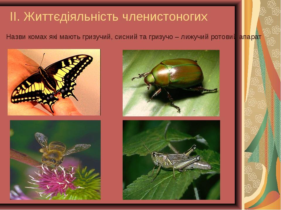 ІІ. Життєдіяльність членистоногих Назви комах які мають гризучий, сисний та г...