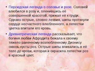 Персидская легенда о соловье и розе. Соловей влюбился в розу и, пленившись её