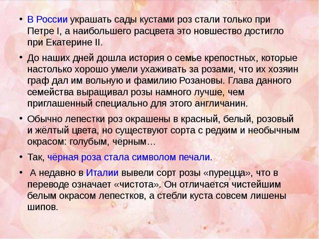 В России украшать сады кустами роз стали только при Петре I, а наибольшего ра...