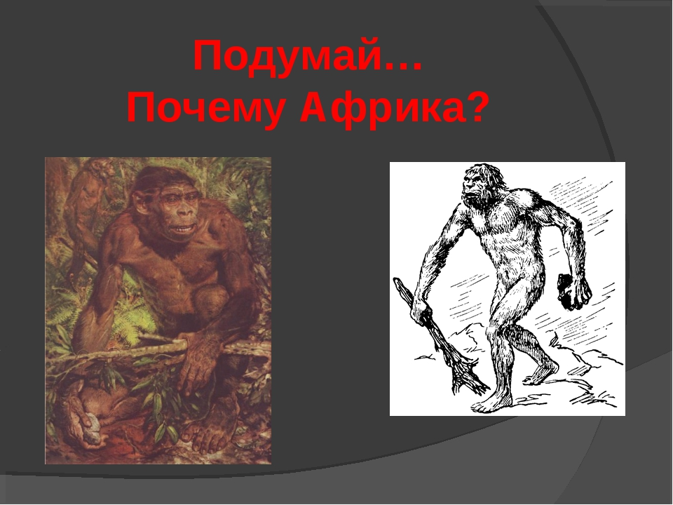 Подумай… Почему Африка?