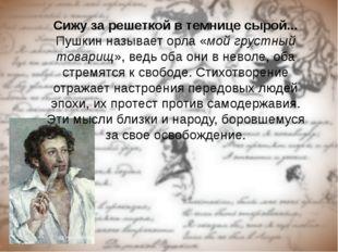 Сижу за решеткой в темнице сырой... Пушкин называет орла «мой грустный товари