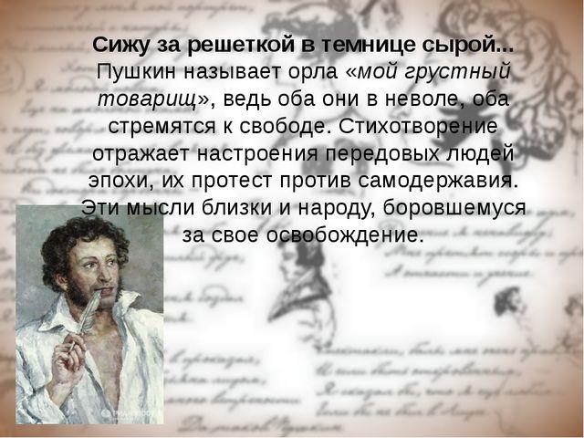 Сижу за решеткой в темнице сырой... Пушкин называет орла «мой грустный товари...