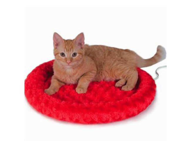which litter box is best for cats