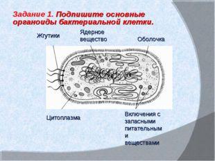 Включения с запасными питательными веществами Ядерное вещество Жгутики Цитопл