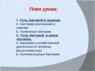 План урока: 1. Роль бактерий в природе. А. Бактерии разложения и гниения. Б.