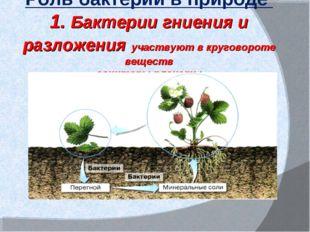 Роль бактерий в природе 1. Бактерии гниения и разложения участвуют в кругово