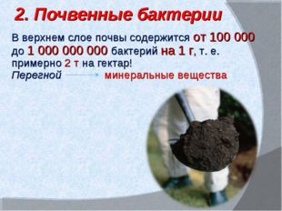 В верхнем слое почвы содержится от 100 000 до 1 000 000 000 бактерий на 1 г,