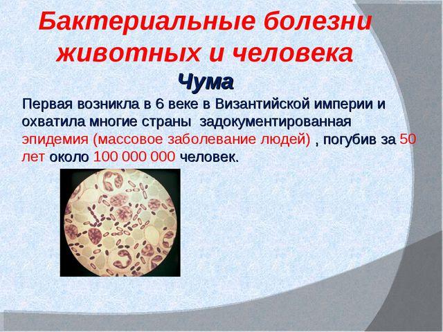 Бактериальные болезни животных и человека Чума Первая возникла в 6 веке в Виз...