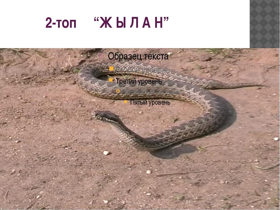 """2-топ """"Ж Ы Л А Н"""""""