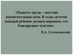 «Радость труда – могучая воспитательная сила. В годы детства каждый ребенок