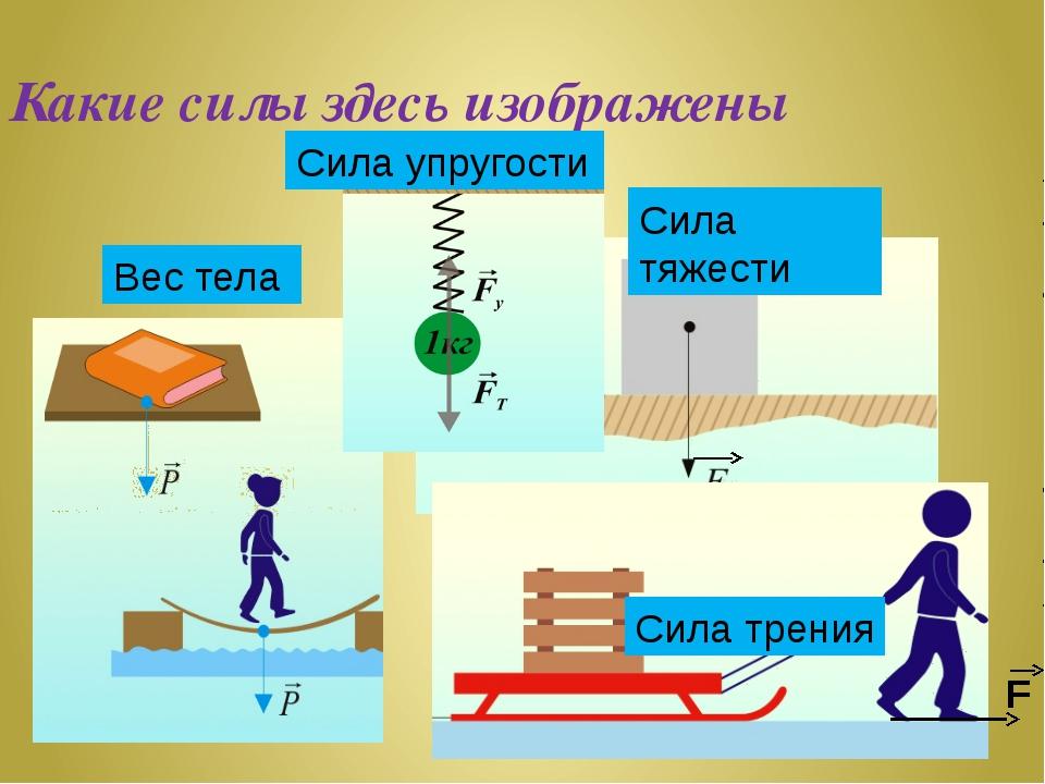 Какие силы здесь изображены Вес тела Сила тяжести Сила упругости Сила трения F