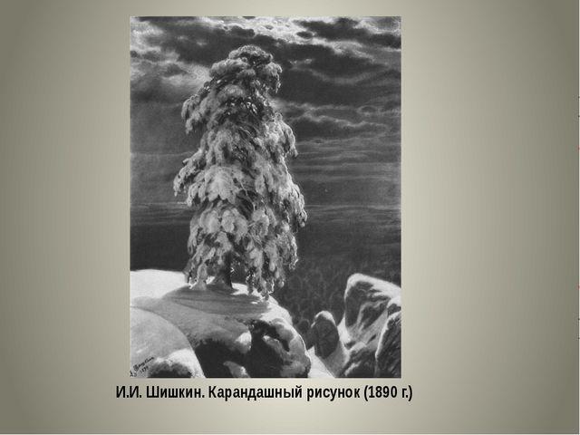 И.И. Шишкин. Карандашный рисунок (1890 г.)