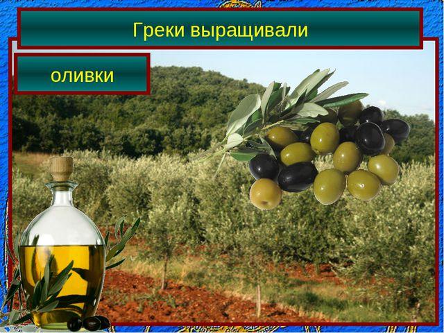 Греки выращивали оливки