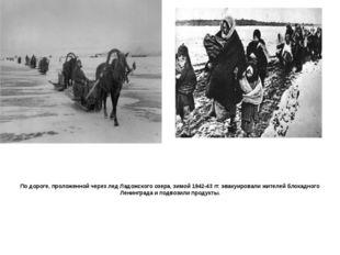 По дороге, проложенной через лед Ладожского озера, зимой 1942-43 гг. эвакуиро