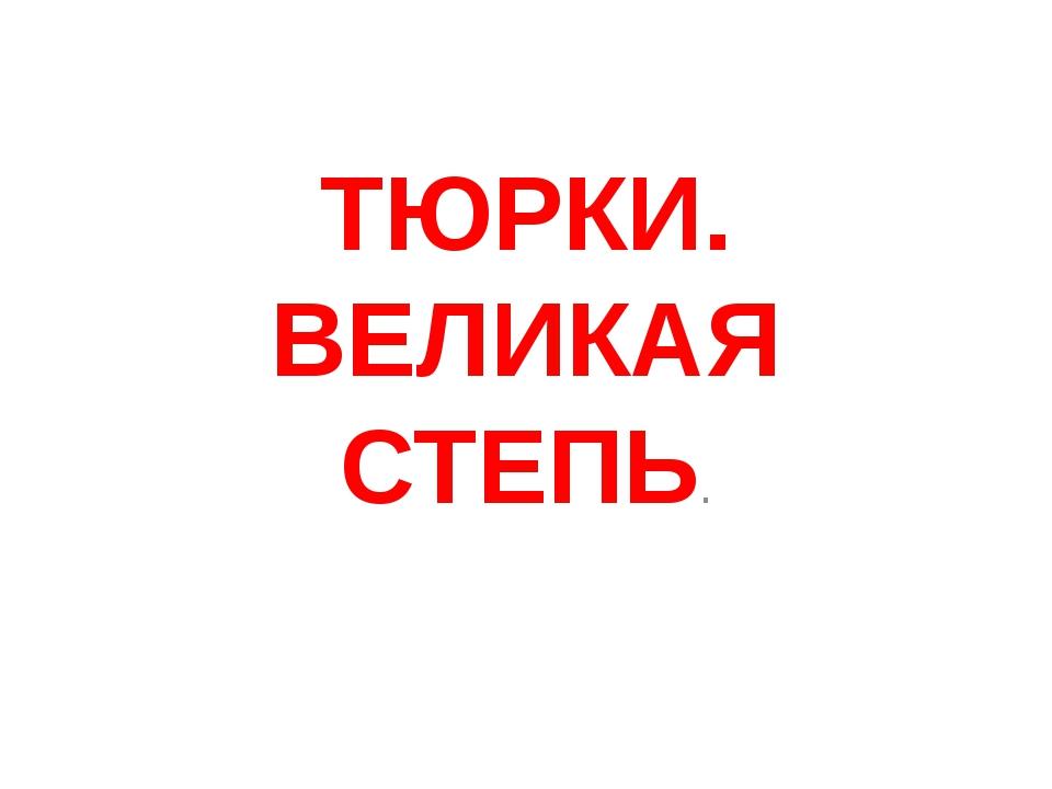 ТЮРКИ. ВЕЛИКАЯ СТЕПЬ.