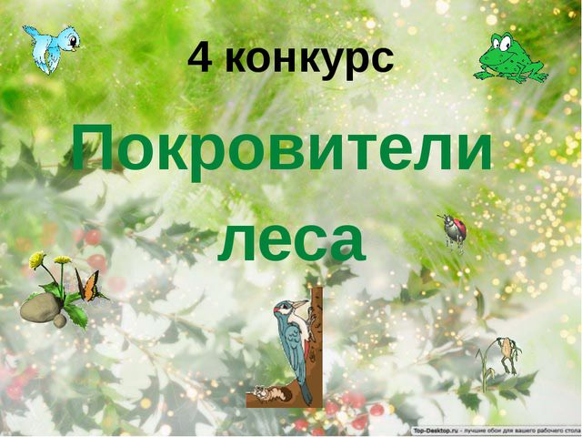 4 конкурс Покровители леса