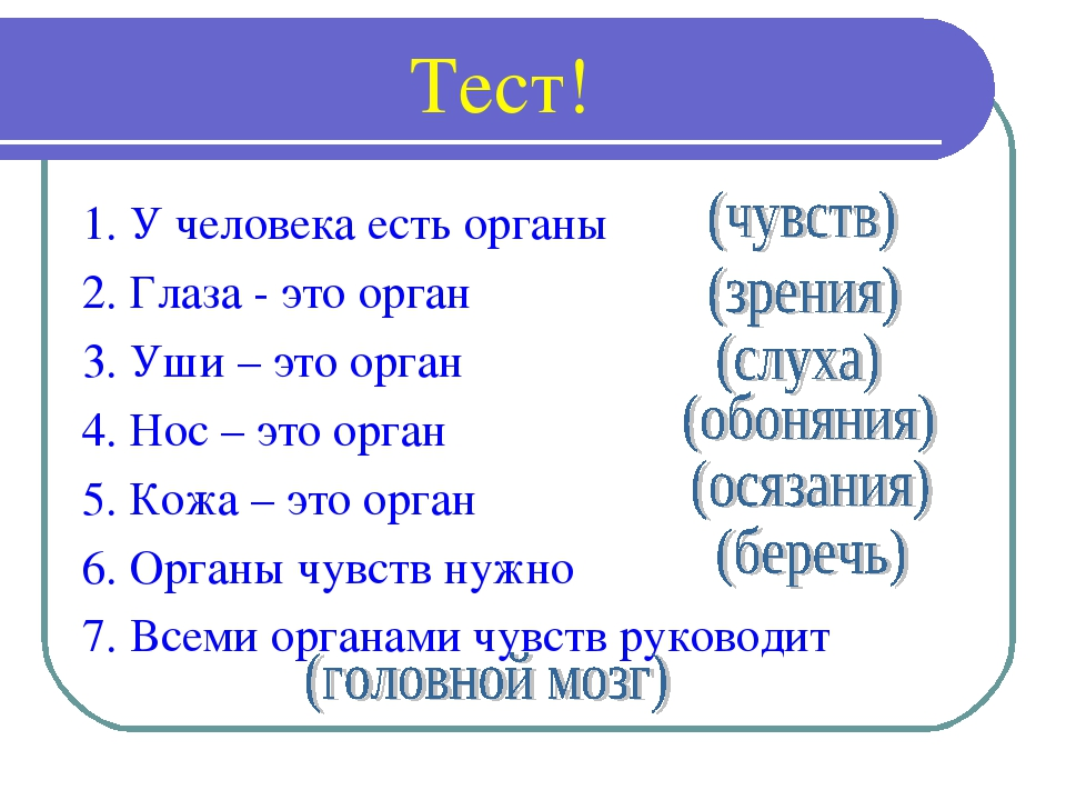 Тест! 1. У человека есть органы 2. Глаза - это орган 3. Уши – это орган 4. Н...
