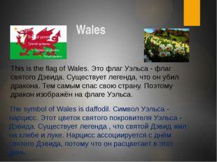 Wales The symbol of Wales is daffodil. Символ Уэльса - нарцисс. Этот цветок