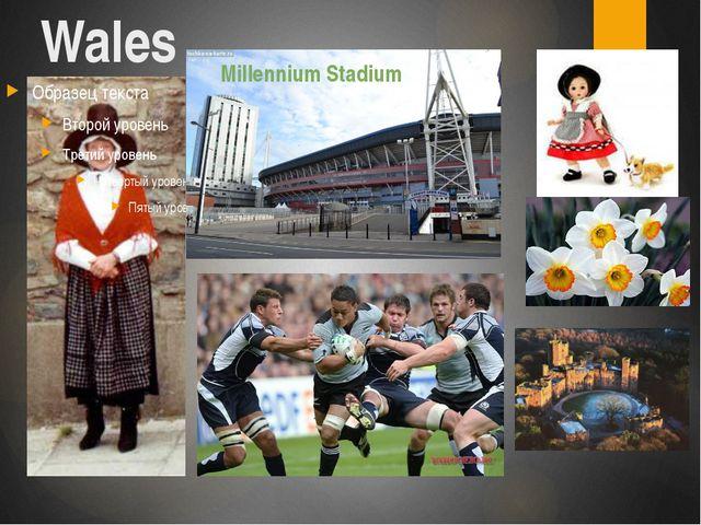 Wales Millennium Stadium