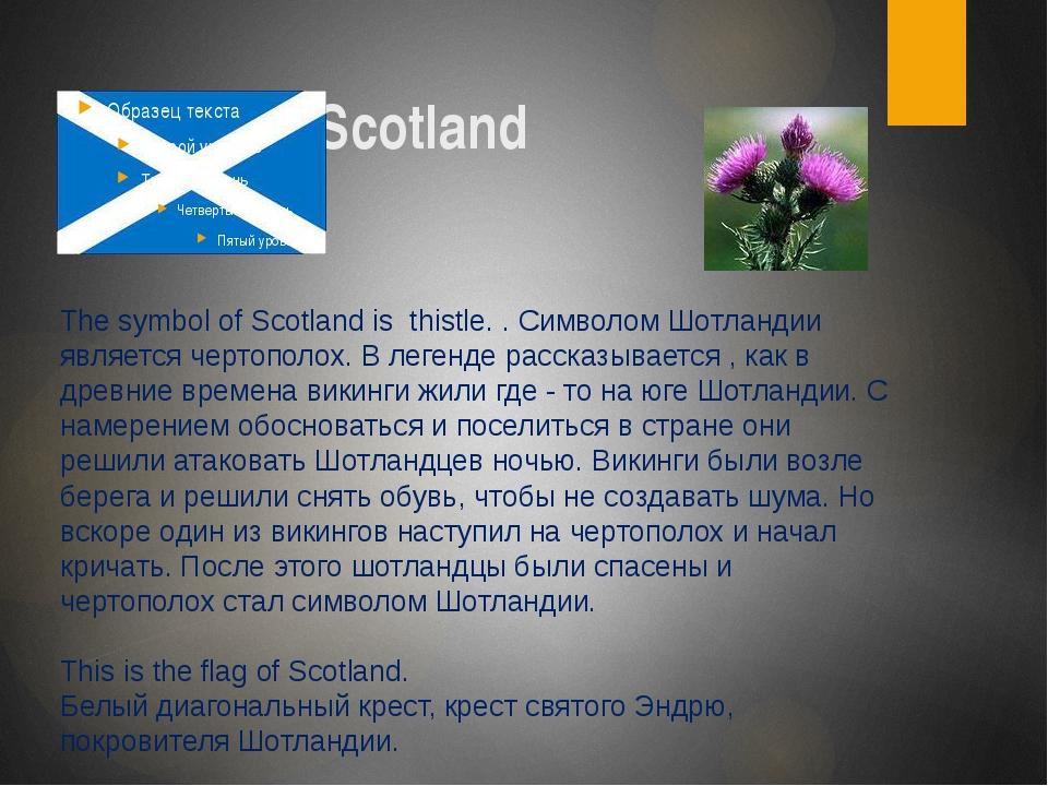 Scotland The symbol of Scotland is thistle. . Символом Шотландии является че...