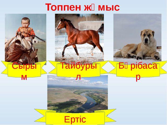 Топпен жұмыс Сырым Тайбурыл Бөрібасар Ертіс