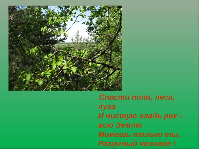 Спасти поля, леса, луга И чистую гладь рек – всю Землю Можешь только ты, Раз...