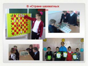 В «Стране шахматных фигур»