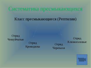 Систематика пресмыкающихся Класс пресмыкающиеся (Рептилии) Отряд Чешуйчатые О