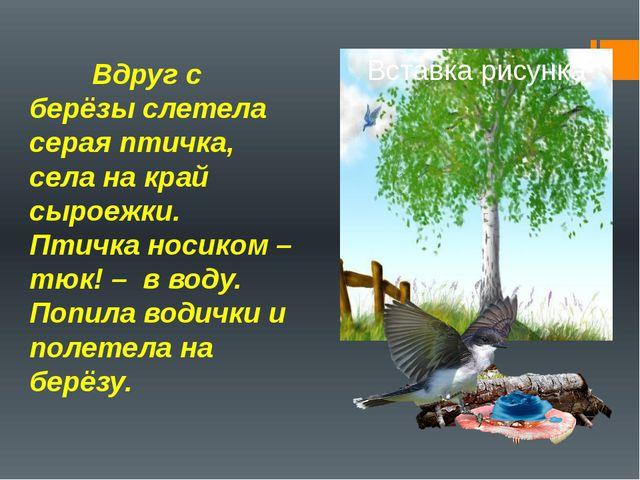 Вдруг с берёзы слетела серая птичка, села на край сыроежки. Птичка носиком –...