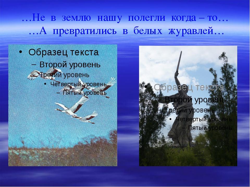 …Не в землю нашу полегли когда – то… …А превратились в белых журавлей…