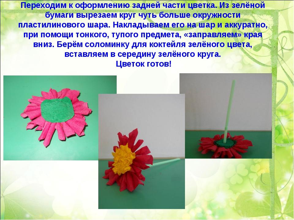 Переходим к оформлению задней части цветка. Из зелёной бумаги вырезаем круг ч...