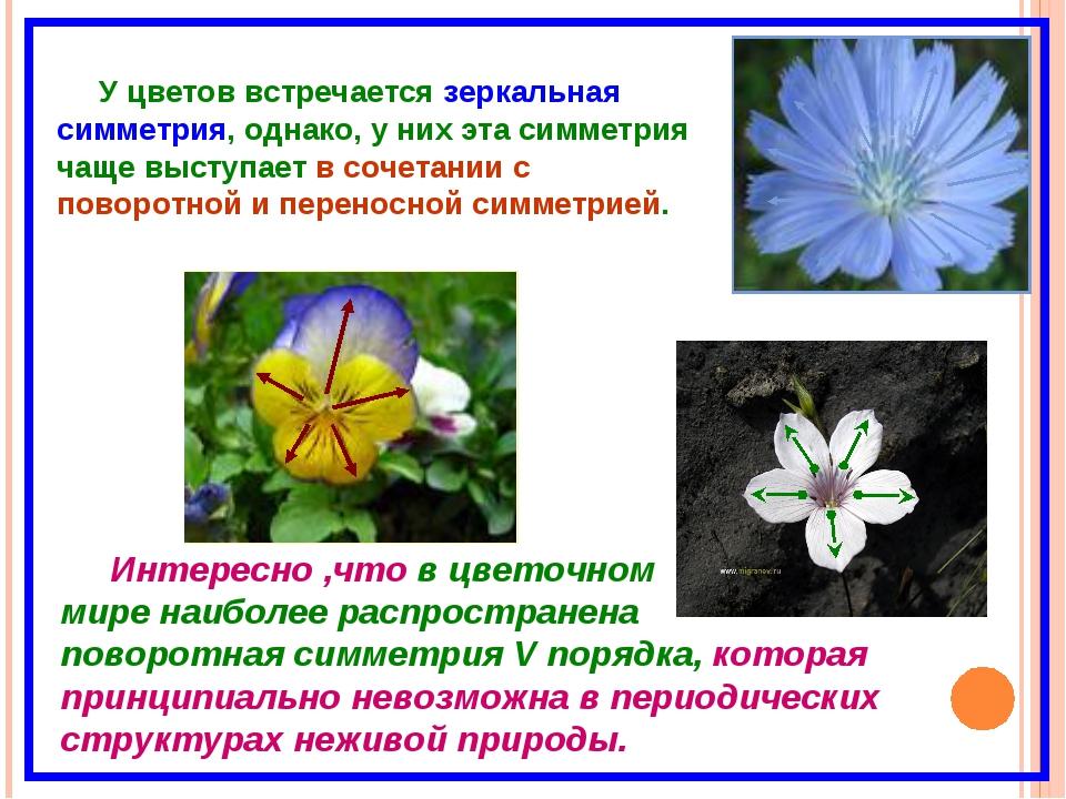 У цветов встречается зеркальная симметрия, однако, у них эта симметрия чаще в...
