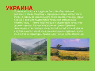 УКРАИНА Украина находится в пределах Восточно-Европейской равнины, в зонах со
