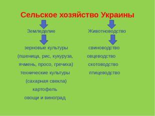 Сельское хозяйство Украины Земледелие Животноводство зерновые культуры свинов