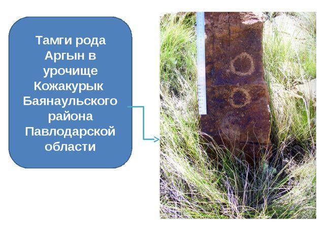 Тамги рода Аргын в урочище Кожакурык Баянаульского района Павлодарской области