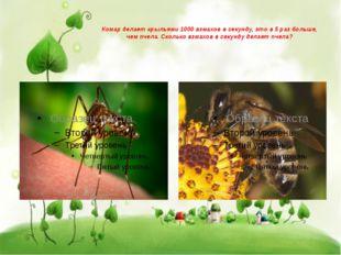 Комар делает крыльями 1000 взмахов в секунду, это в 5 раз больше, чем пчела.
