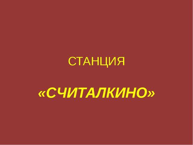СТАНЦИЯ «СЧИТАЛКИНО»